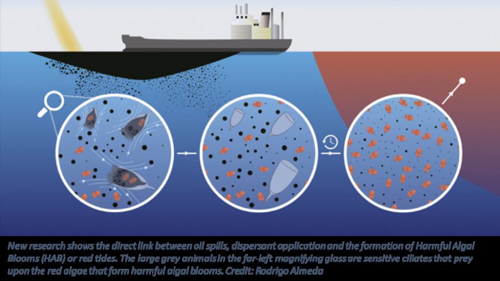 Dispersant graphic 2
