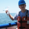 Chemical Study Shows Different Patterns of Oil Weathering