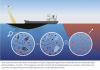 Dispersant graphic